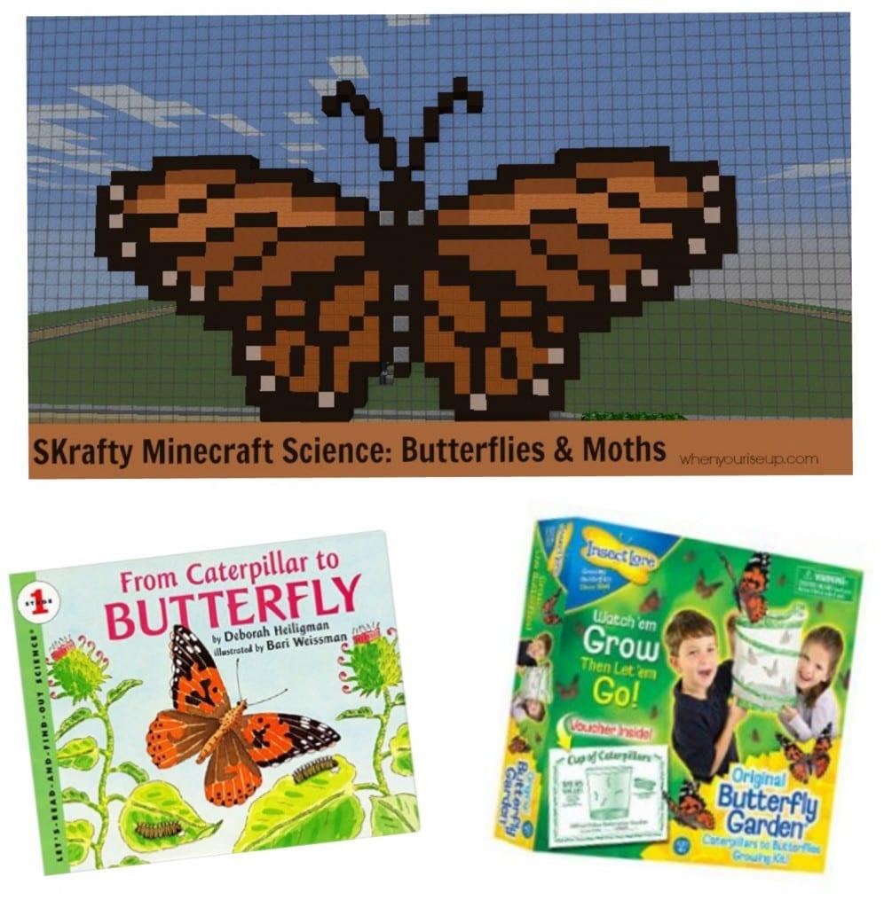 Butterflies & Moths Class