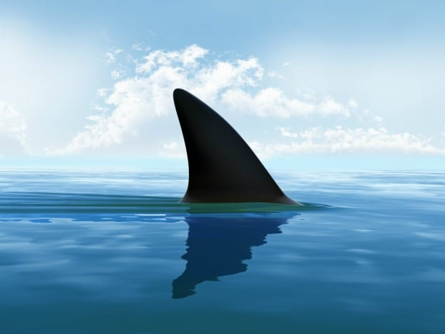 Shark Week course image