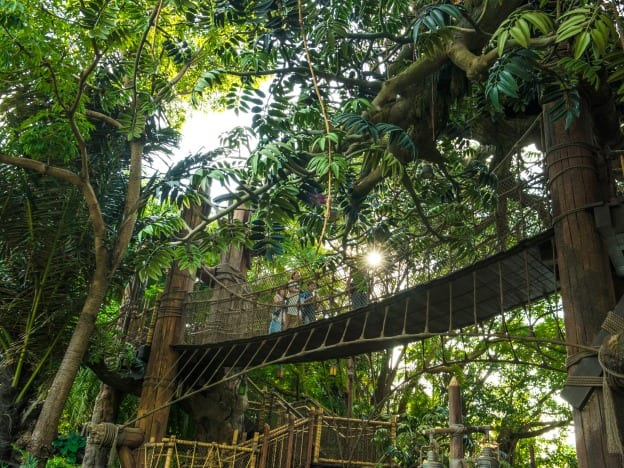 Swiss Family Robinson course image